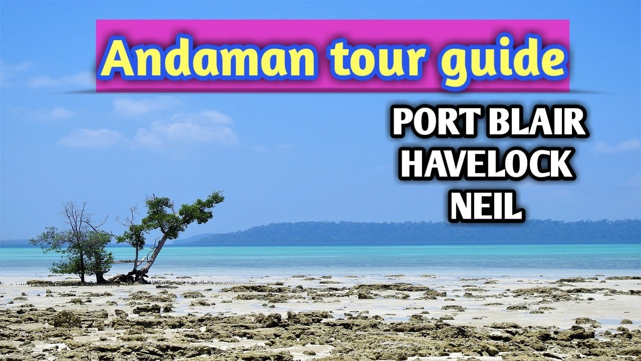 Andaman tour guide || Best places to visit in Andaman || Havelock || Port Blair || Neil island