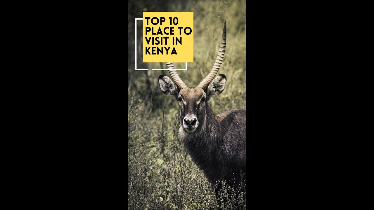 10 Best Places To Visit In Kenya 🛩️ Quick Travel Guide #shorts