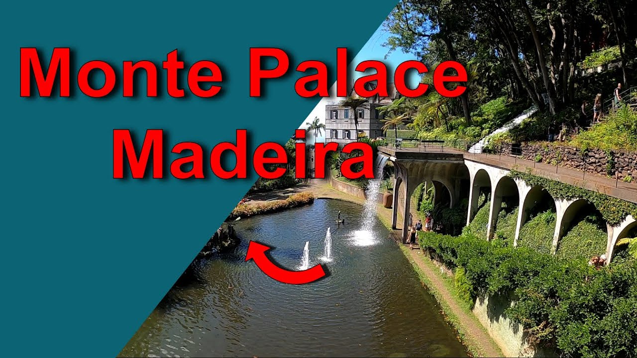 Madeira Vacation Travel Guide   Monte Palace #shorts